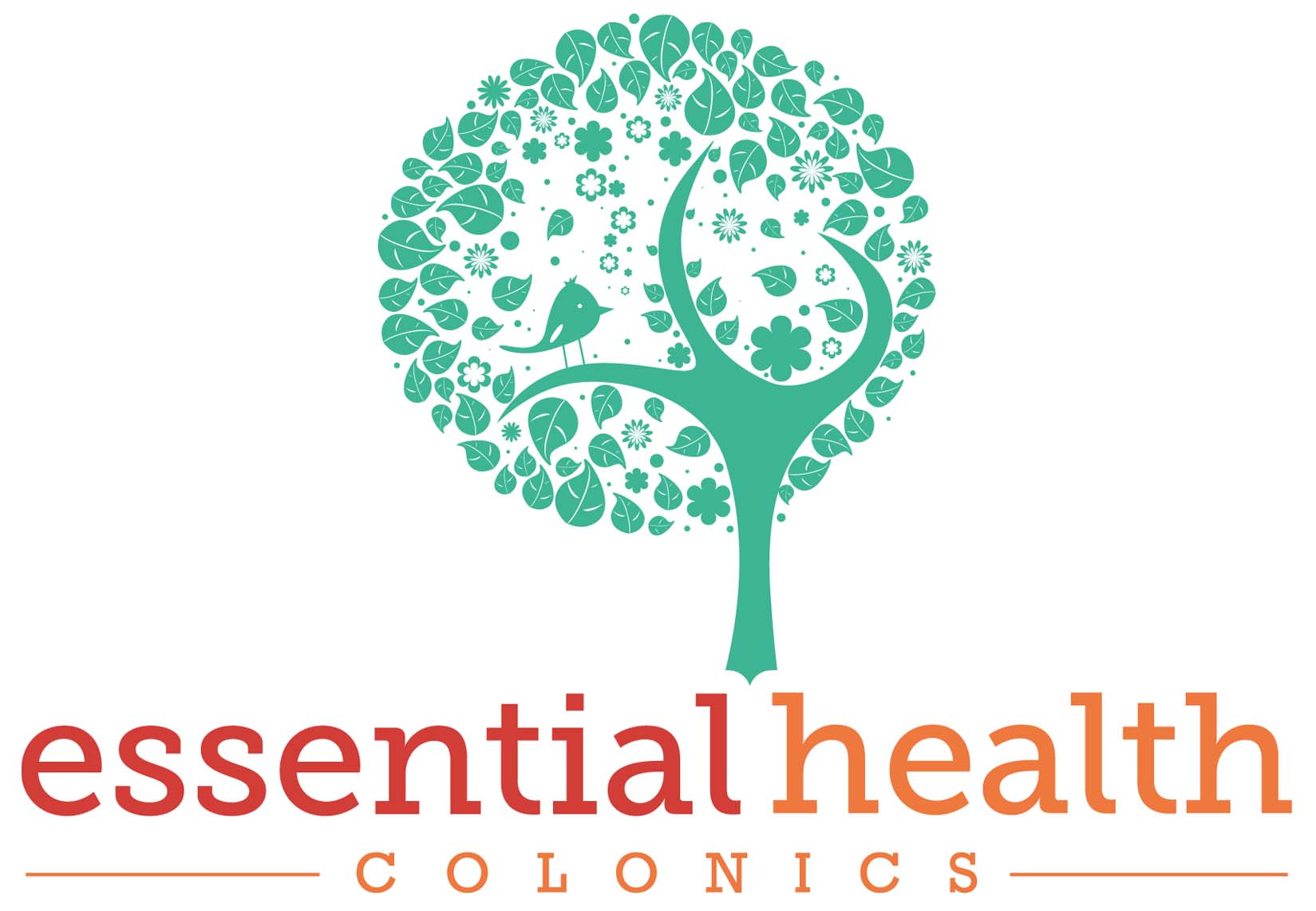 Understanding Colon Hydrotherapy and how it can help you!