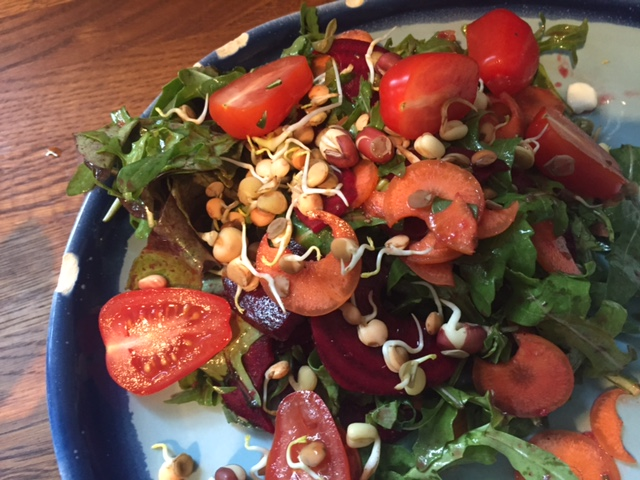 Mixed Sprout Salad – Get some live foods into your world!